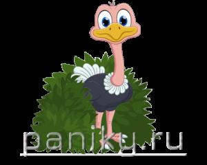 Логотип страусенок